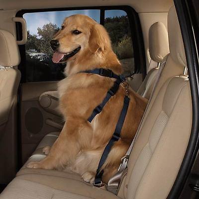 HDP Dog Car Harness Safety Seat Belt Gear Travel System Adjustable ...