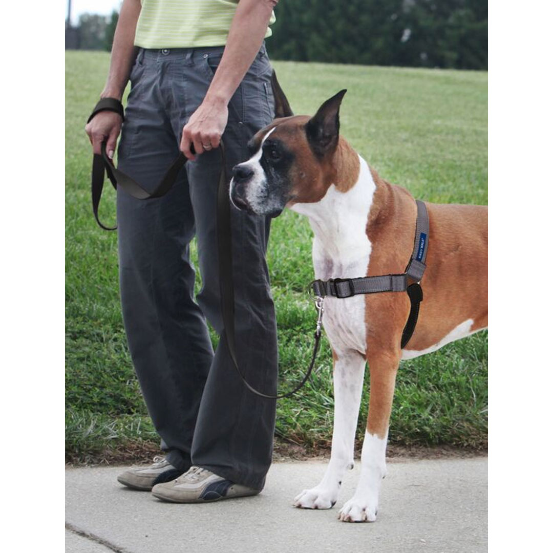 Easy Walk No Pull Dog Harness
