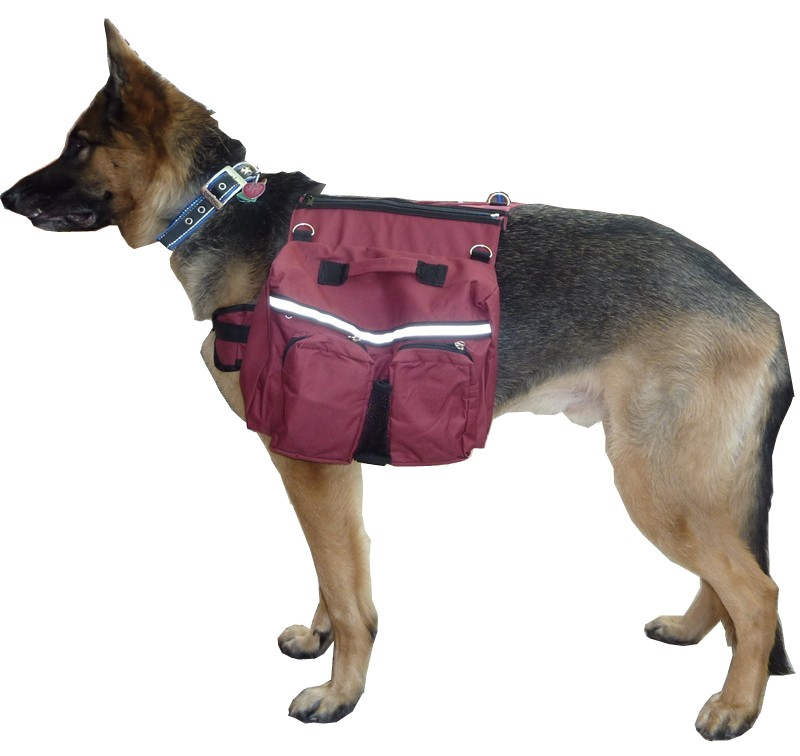 Dog Backpack Harness - Top Reviewed Backpacks