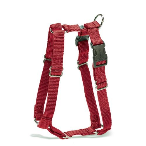 how to put on a premier cat harness