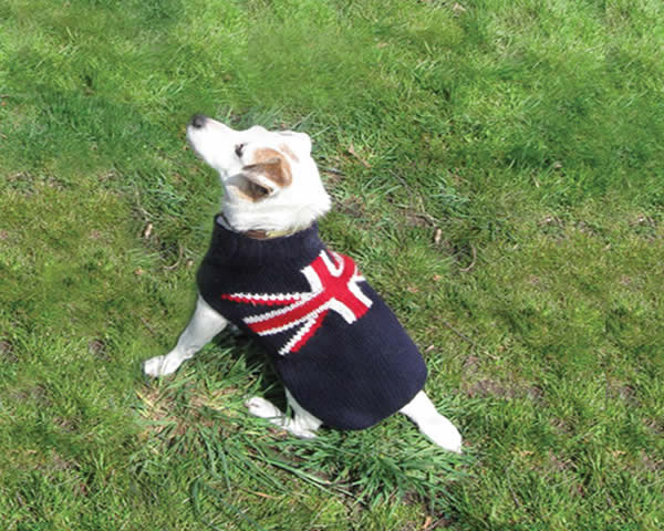 Chilly Dog Winter Wool Coats Flags Sweaters 100 Wool Ebay